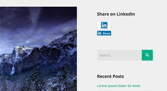 LinkedIn bouton de partage dans la barre latérale