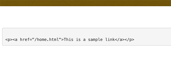 Affichage manuel du code dans WordPress